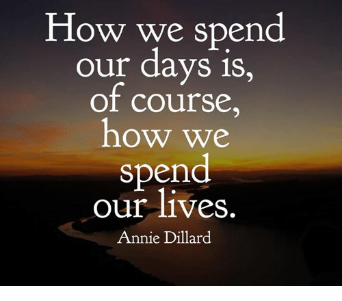 how-we-spend-our-days-is-of-course-how-we-16203156